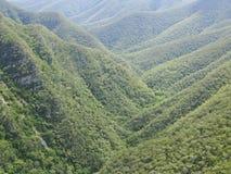Wald und Hügel in Australien Stockfotografie