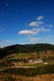 Wald und Kloster stockbilder