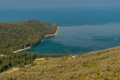 Wald und olivgrüne Plantage befestigt zum Meer Stockbild