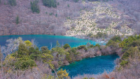 Wald und See stockfotos