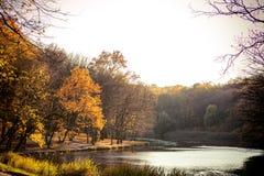Wald und See in den Herbstfarben Stockbild