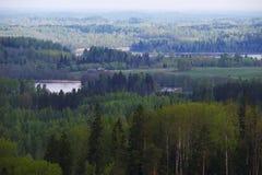 Wald und Seen stockbild