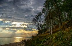 Wald und Ufer stockfotos