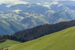 Wald- und Wiesenansicht von der Spitze des Berges Stockfotografie