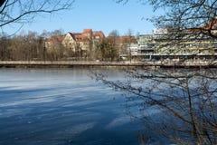 Wald und Wintersonne stadt Stockfotos