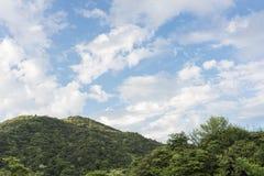Wald und Wolke am sonnigen Tag unter blauem Himmel stockfotografie