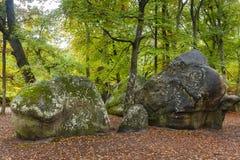 Wald von Fontainebleau Stockfotos