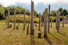Wald von Stangen im Park Lizenzfreie Stockbilder
