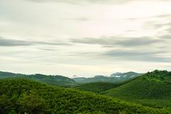 Waldberg und bewölken eine szenische Landschaft Lizenzfreies Stockfoto