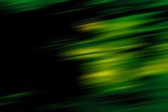 Waldbewegungszittern Stockfoto