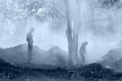 Waldbrand stockbilder