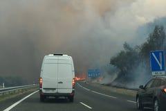 Waldbrand auf der Straße stockbilder