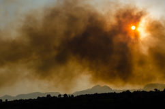 Waldbrand in Col. del Bosque, Cuernavaca, Morelos, Mexiko Stockfotos