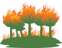 Waldbrandunfall stockfotos