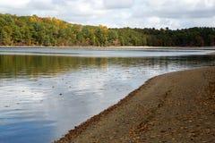 Walden Pond Royalty Free Stock Image