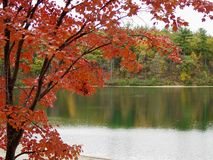 Walden Pond. The view from Thoreau`s cabin royalty free stock photography