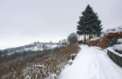 Waldenburg at winter time Royalty Free Stock Photography