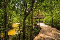 Walderhaltung und -tourist Tha Pom Klong Song Nam Mangrove Lizenzfreies Stockfoto