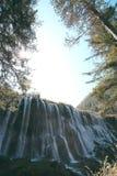 Waldfälle Stockfoto