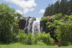 Waldfälle des Macmacflusses im Norden von sabie, Südafrika Stockfoto