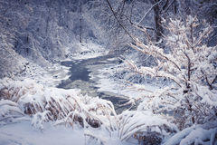 Waldfluß im Winterschnee Stockfoto