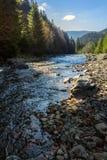 Waldfluß mit Steinen und Moos Lizenzfreie Stockfotografie