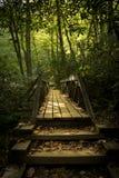 Waldfußgängerbrücke auf einem Weg benutzt zur Wanderung für entspannende Zwecke der Freizeit und des Spaßes stockfotografie