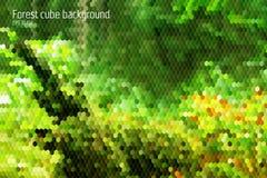 Waldgeometrisches backgorund mit Formen des Hexagons 3d und der Quadrate Stockfotos