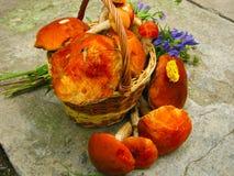 Waldgeschenkpilze in einem Korb und in einem Blumenstrauß von wilden Blumen stockbild