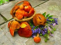 Waldgeschenkpilze in einem Korb und in einem Blumenstrauß von wilden Blumen stockfotografie