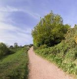 Waldland die clent Hügel Stockbilder