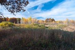 Waldland und Felder von Necedah-Schutz Stockfotografie