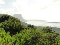 Waldlandschaft mit Strand, dem Grün und den Bäumen lizenzfreies stockbild