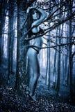 Waldmädchen umfasst durch einen Baum Stockfotos
