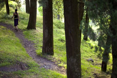 WaldMärchen mit Schönheitsmädchen Stockbilder