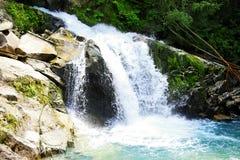 Waldminiwasserfall mit blauem Wasser lizenzfreies stockbild