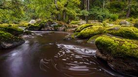 Waldnaab flod Royaltyfria Foton