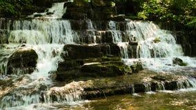 Waldnebenfluß und -wasserfall stock video footage
