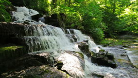 Waldnebenfluß und -wasserfall Stockfotografie
