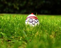 Waldo与滑稽的表情的字符鸡蛋在草的关闭  免版税图库摄影