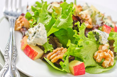 Waldorf Salad. A plate of Waldorf salad with blue cheese, apples, and walnuts stock image