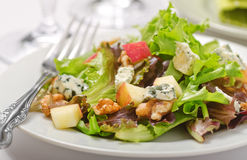 Waldorf Salad. A plate of Waldorf salad with blue cheese, apples, and walnuts royalty free stock images