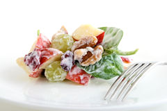 Waldorf Salad Royalty Free Stock Image