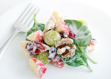 Waldorf Salad Royalty Free Stock Photography