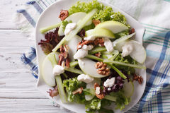 Waldorf Salad with apples, celery and walnuts close-up. horizont Royalty Free Stock Photography