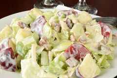 Waldorf salad closeup Stock Image