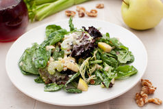 Waldorf salad closeup with ingredients Royalty Free Stock Image