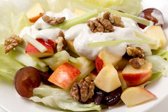 Waldorf salad closeup Royalty Free Stock Images