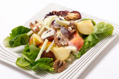 Waldorf salad over white at an angle Royalty Free Stock Photos