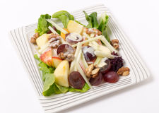 Waldorf salad over white high angle Royalty Free Stock Images